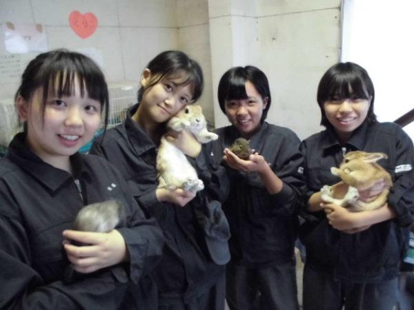 畜産実習_小動物の管理